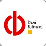 FCV2015 - logo CB